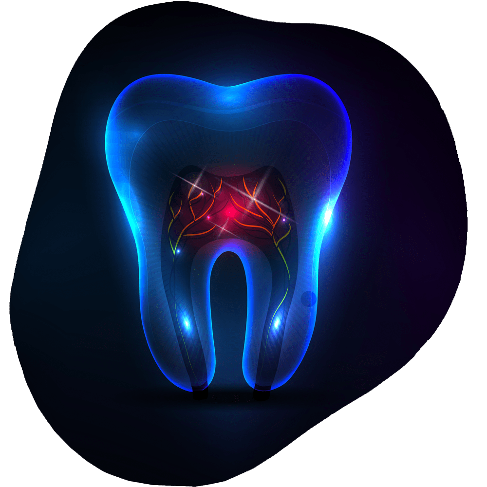 Root Canal | Toothville Family Dentistry | NW Calgary | General Dentist
